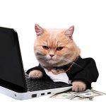 Заработок в Интернете на сайтах