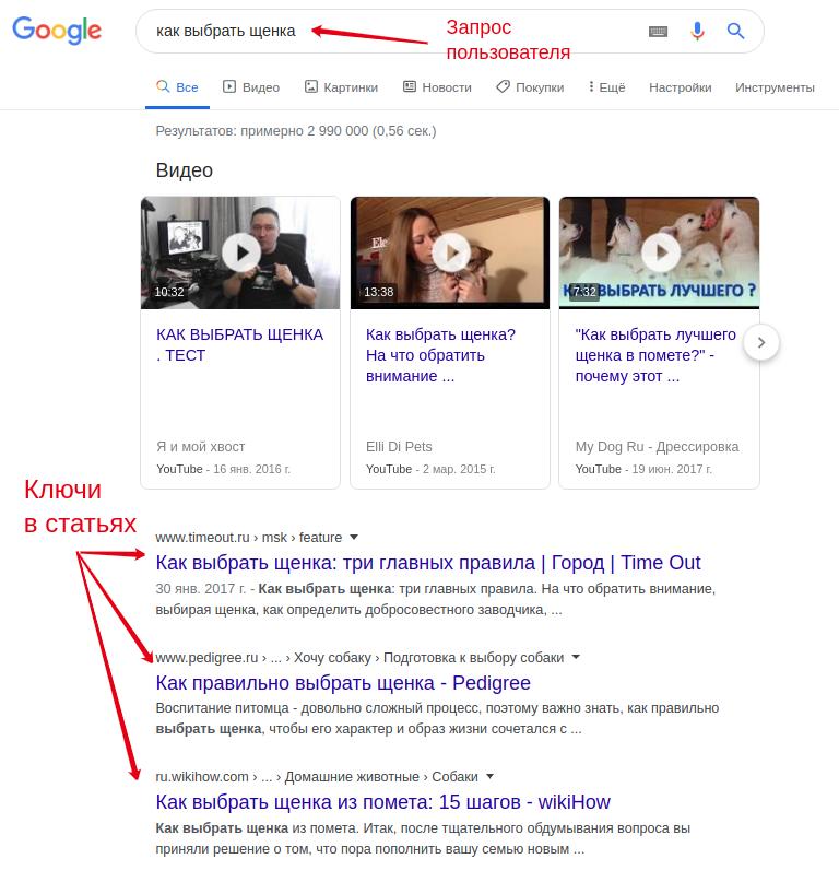 Скриншот запроса пользователя и ключей в статьях