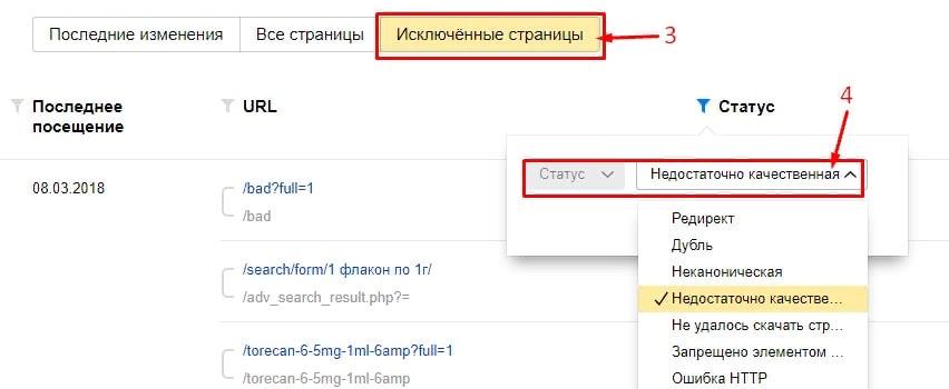 Пример Яндекс.Вебмастер